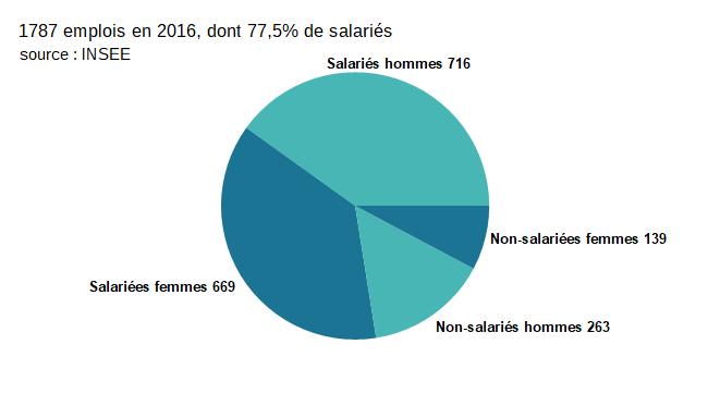 Emploi H/F et salarié/non-salarié