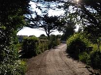 Un chemin de l'Ile